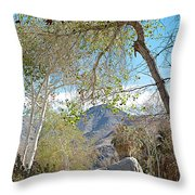 Trailhead Area In Andreas Canyon In Indian Canyons-ca Throw Pillow