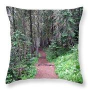 Trailhead Throw Pillow