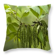 Trailing Green Draperies Throw Pillow