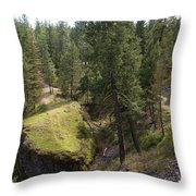 Trails In Spokane Throw Pillow