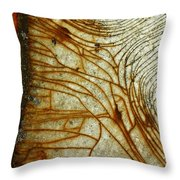 Trails Of Panic  Throw Pillow