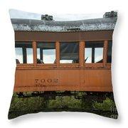 Train Coach Windows Throw Pillow