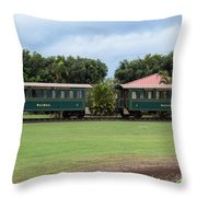 Train Lovers Throw Pillow