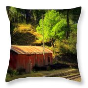 Train Shed Throw Pillow
