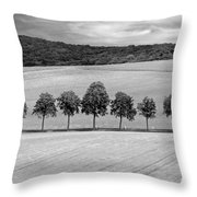 Train With A View Bw Throw Pillow