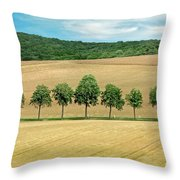 Train With A View Throw Pillow