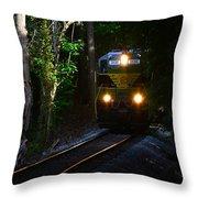 Rails Through The Wilderness Throw Pillow