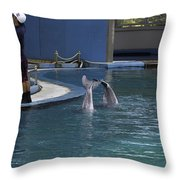 Trainer And 2 Dolphins At The Underwater World In Sentosa Throw Pillow