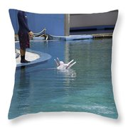 Trainer And Duo Of Dolphins At The Underwater World In Sentosa Throw Pillow