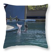Trainer And The Tails Of A Duo Of Dolphins At The Underwater World Throw Pillow