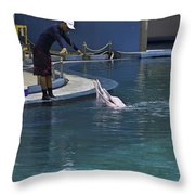 Trainer Feeding Duo Of Dolphins At The Underwater World In Sentosa Throw Pillow