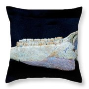 Trampas Horse Throw Pillow