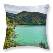 Tranquil Bay In Abel Tasman Np In New Zealand Throw Pillow