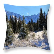 Tranquil Mountain Scene Throw Pillow