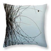 Tranquil Reeds Throw Pillow