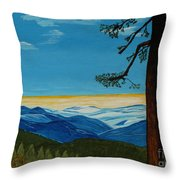 Tranquil Solitude Throw Pillow