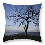 Tranquil Throw Pillow by Terry DeLuco