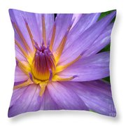 Tranquil Thoughts Throw Pillow