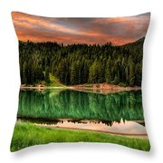 Tranquility Throw Pillow by Brett Engle