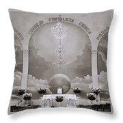 Transcendental Beauty Throw Pillow