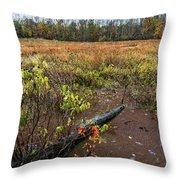 Transcending To Autumn Throw Pillow