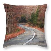 Transfagarasan Road Carpathian Mountains Romania  Throw Pillow