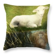 Transformation Lamb Or Lion Throw Pillow