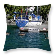 Transients Throw Pillow