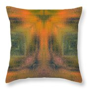 Transitional Patterns  Throw Pillow