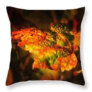 Transitioning Throw Pillow