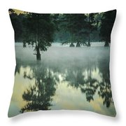 Trap Pond 5 Throw Pillow