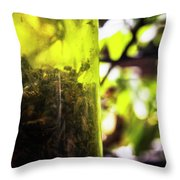 Trapped And Dead Bees Throw Pillow