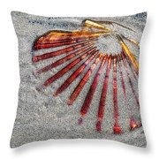 Trapped By The Tide Throw Pillow