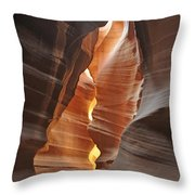 Trapped Sunlight Throw Pillow