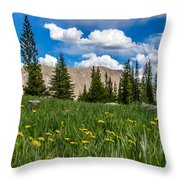 Trappers Lake Meadow Throw Pillow