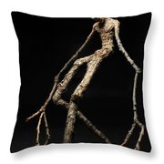 Travail Throw Pillow by Adam Long