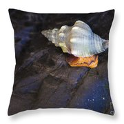 Traveling At A Snail's Pace Throw Pillow