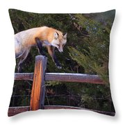 Traveling The Rails Throw Pillow