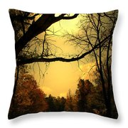 Traveling Thru Throw Pillow