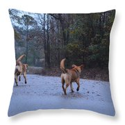Traveling Twins Throw Pillow