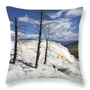 Travertine Terrace And Dead Trees Throw Pillow
