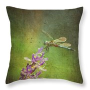 Treading Lightly Throw Pillow