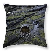 Treasures From The Ocean Throw Pillow