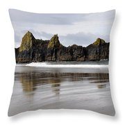 Treasures Of Earth Throw Pillow