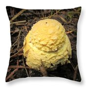 Treasures Of The Forest Four Throw Pillow