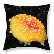 Treasures Of The Forest Two Throw Pillow