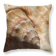 Treasures Of The Ocean 2 Throw Pillow