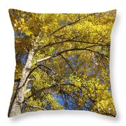 Tree 4 Throw Pillow