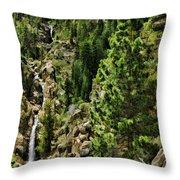 Tree Above Leavitt Falls  Throw Pillow