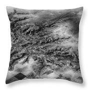 Tree Aerial Landscape V2 Throw Pillow